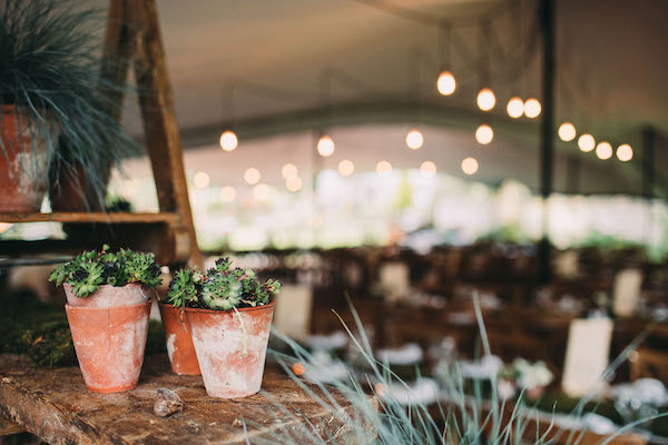 Impressionistic stretch tent - Lawson photography